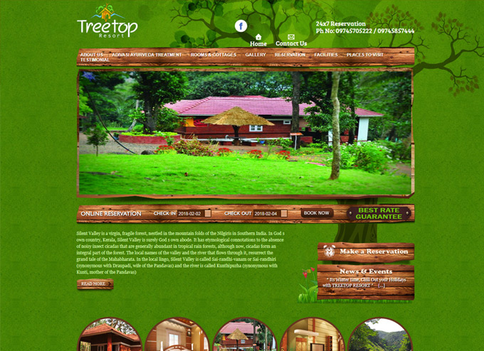 Tree Top Resort